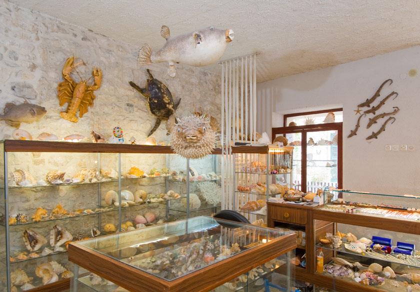 muzej Baška